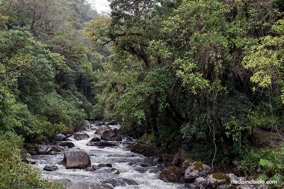 Paso del río Caldera por el sendero de las tres cascadas escondidas, en Boquete (Panamá)