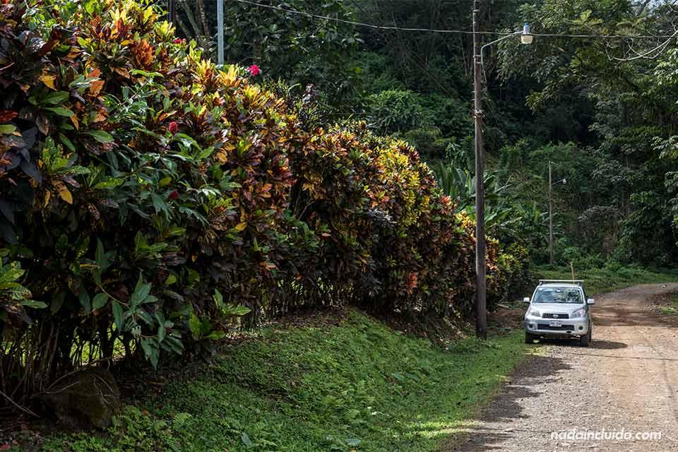 Nuestro coche de alquiler en la carretera que lleva a Los Campesinos Ecolodge (Costa Rica)