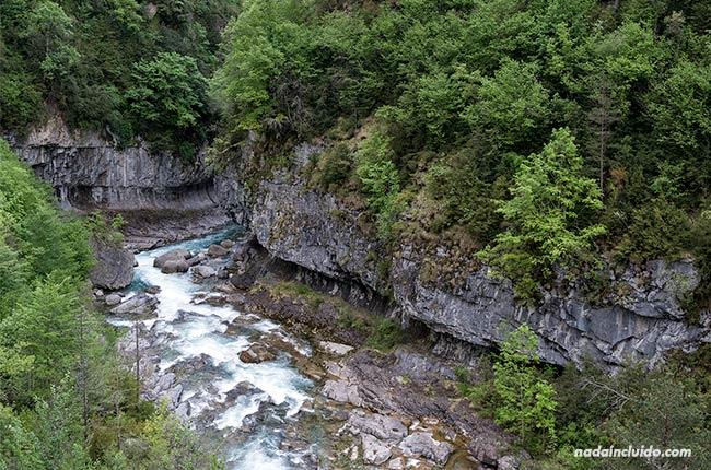 Río Bellos en su paso por el cañón de Añisclo (Sobrarbe, Aragón)