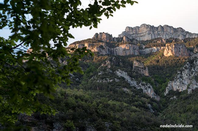 Peña en el cañón de Añisclo (Sobrarbe, Aragón)