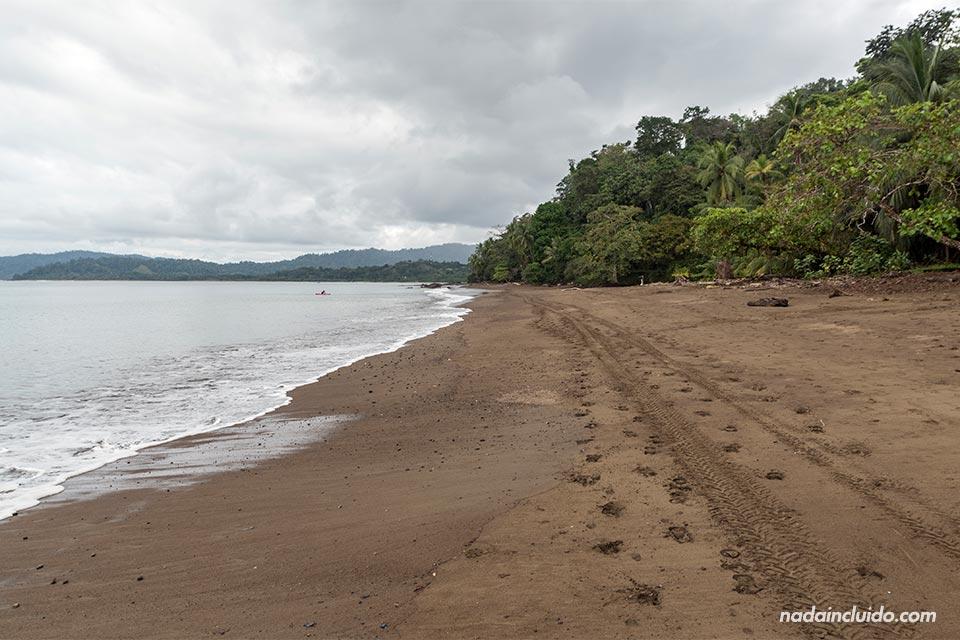 Huellas de quad en la arena de playa Colorada, en Drake (Costa Rica)