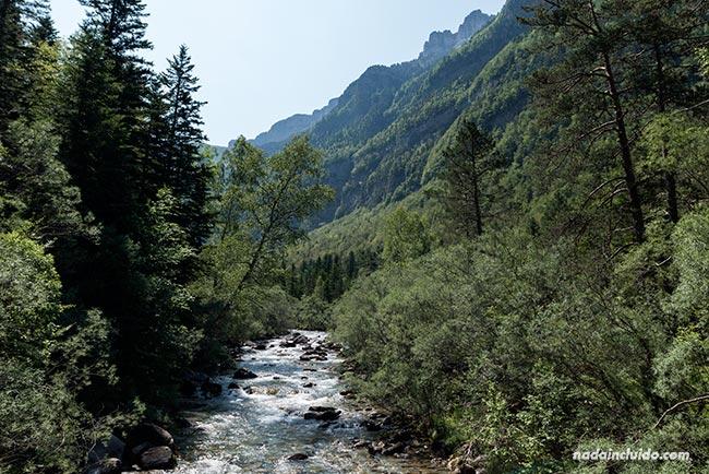 El río Arazas en su paso por el Parque Nacional de Ordesa y Monte Perdido (Aragón)