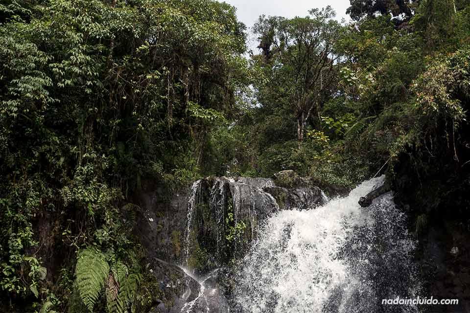 Segunda catarata del sendero de las tres cascadas, Boquete (Panamá)