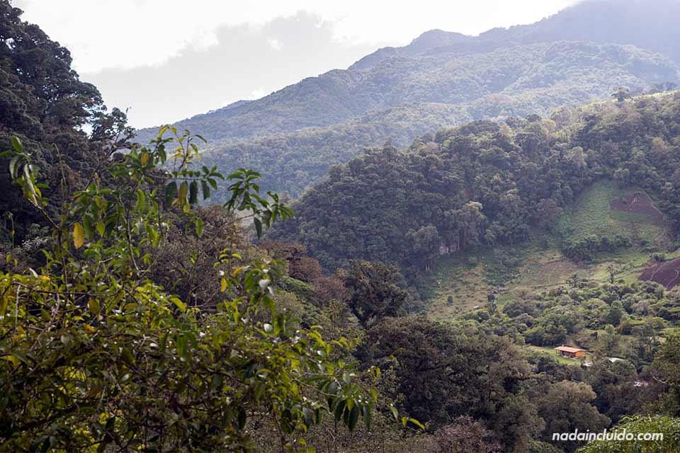 Vistas de Boquete desde el sendero de las tres cascadas escondidas (Panamá)