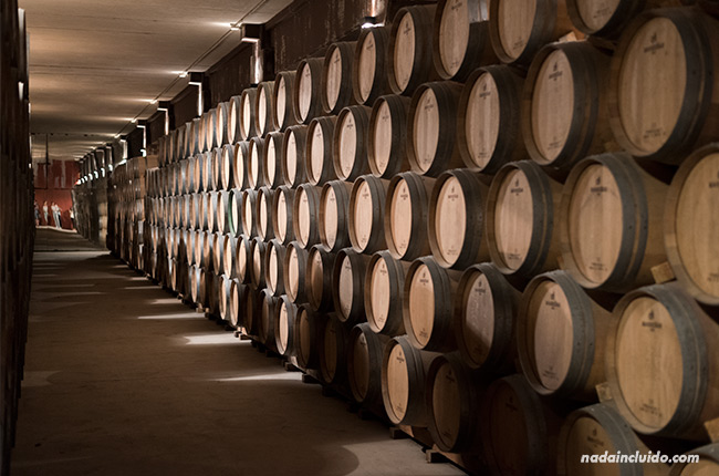 Barricas de vino en Bodegas Valdelana (Elciego, Rioja Alavesa)