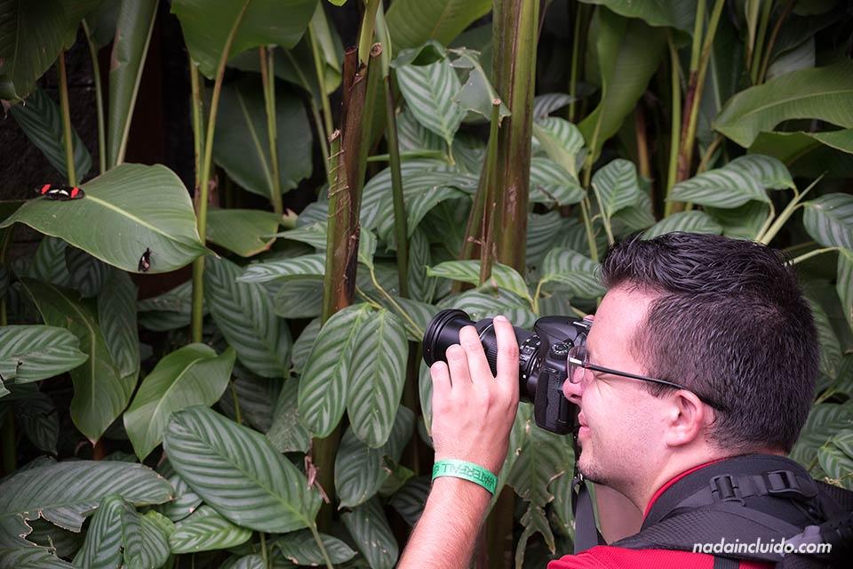 Mariposario en el Jardín de la Catarata de la Paz (Costa Rica)