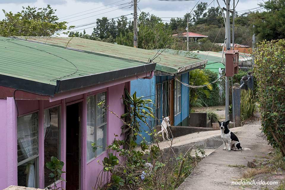 Casas de colores en la localidad de Monteverde (Costa Rica)