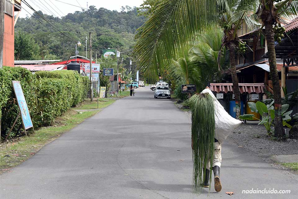 Un señor pasea muy cargado por Puerto Viejo (Costa Rica)