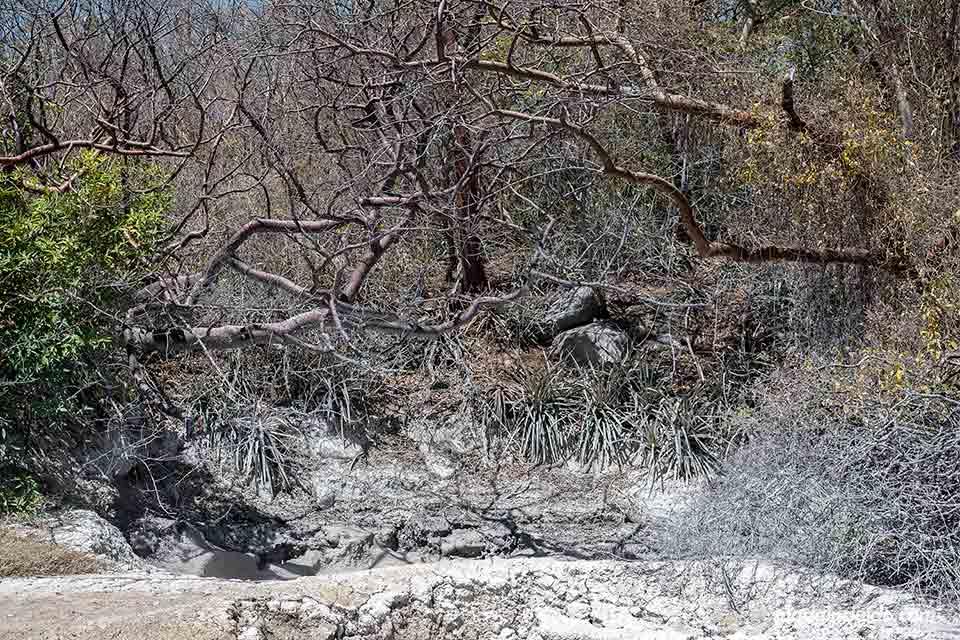Zona de barro en el Parque Nacional Rincón de la Vieja (Costa Rica)
