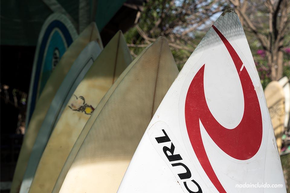 Tablas de surf en un puesto de Santa Teresa (Costa Rica)