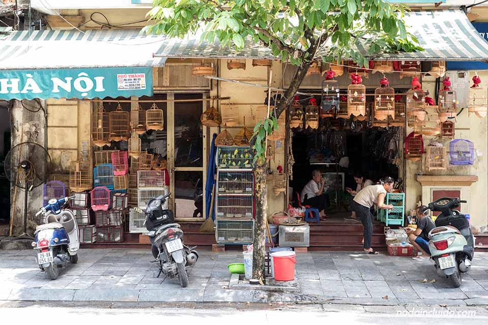 Tienda de pájaros en Hanoi (Vietnam)