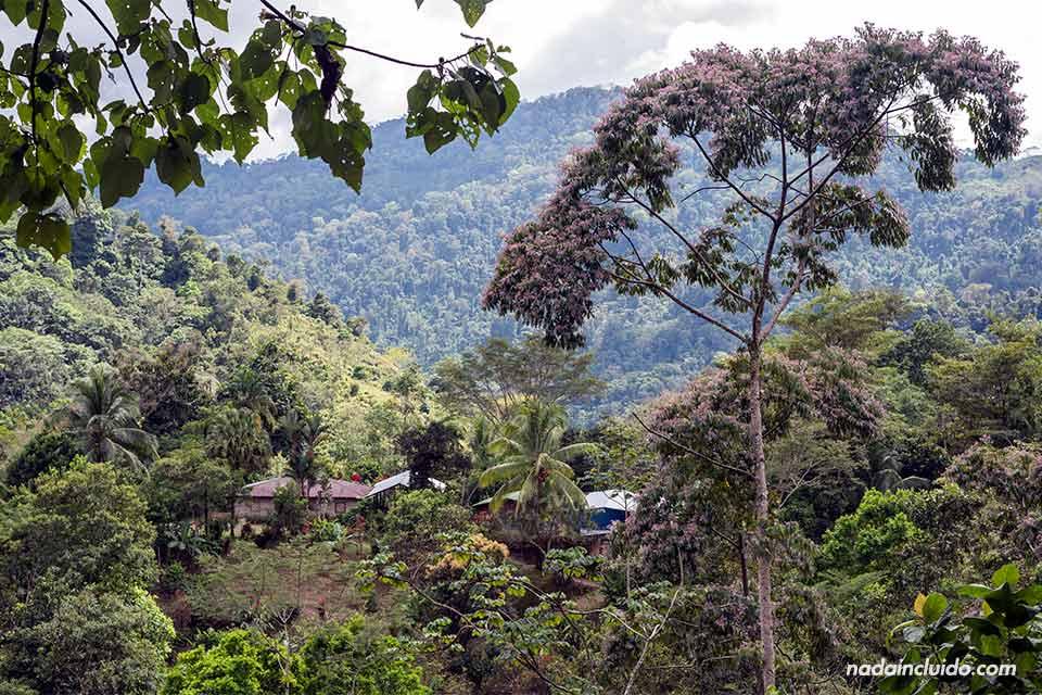 Vistas en Los Campesinos Ecolodge (Costa Rica)