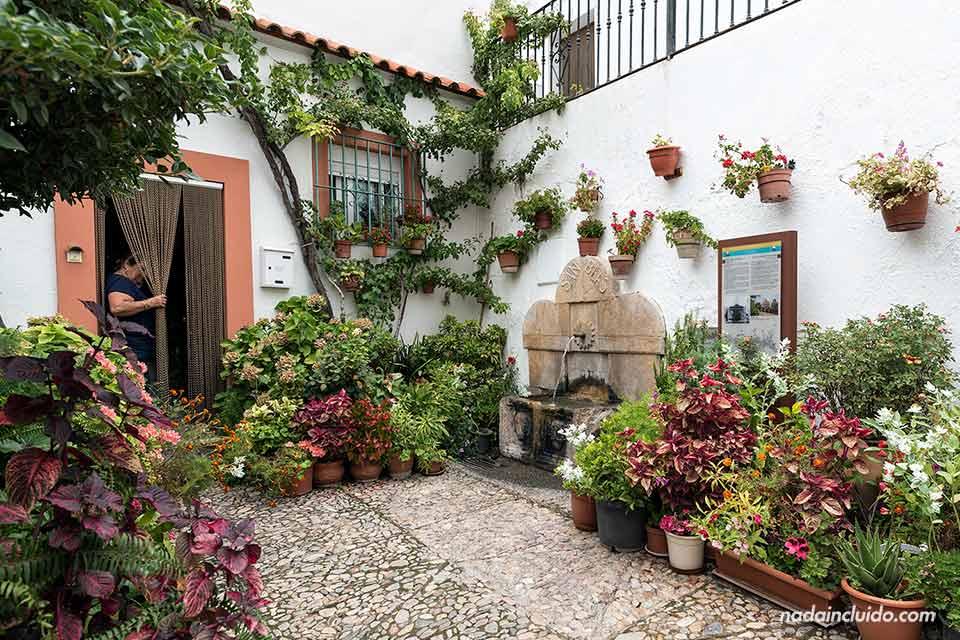 Patio de flores en Laujar de Andarax (Almería)