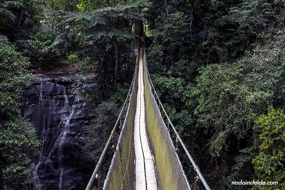 Puente colgante en Los Campesinos Ecolodge (Costa Rica)