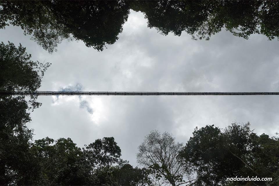 Puente colgante de Los Campesinos Ecolodge desde abajo (Costa Rica)