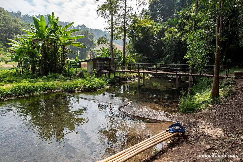 Sai Ngam Hot Spring son unas termas cerca de Pai, en la provincia de Mae Hong Son (Tailandia)