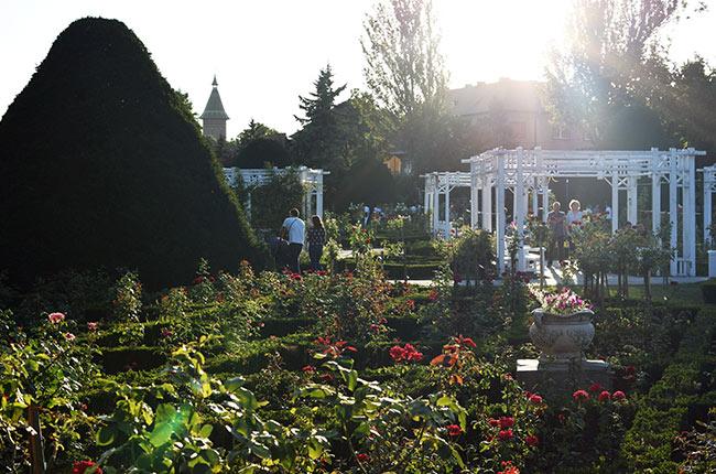 Parque de las Rosas en Timisoara (Rumanía)