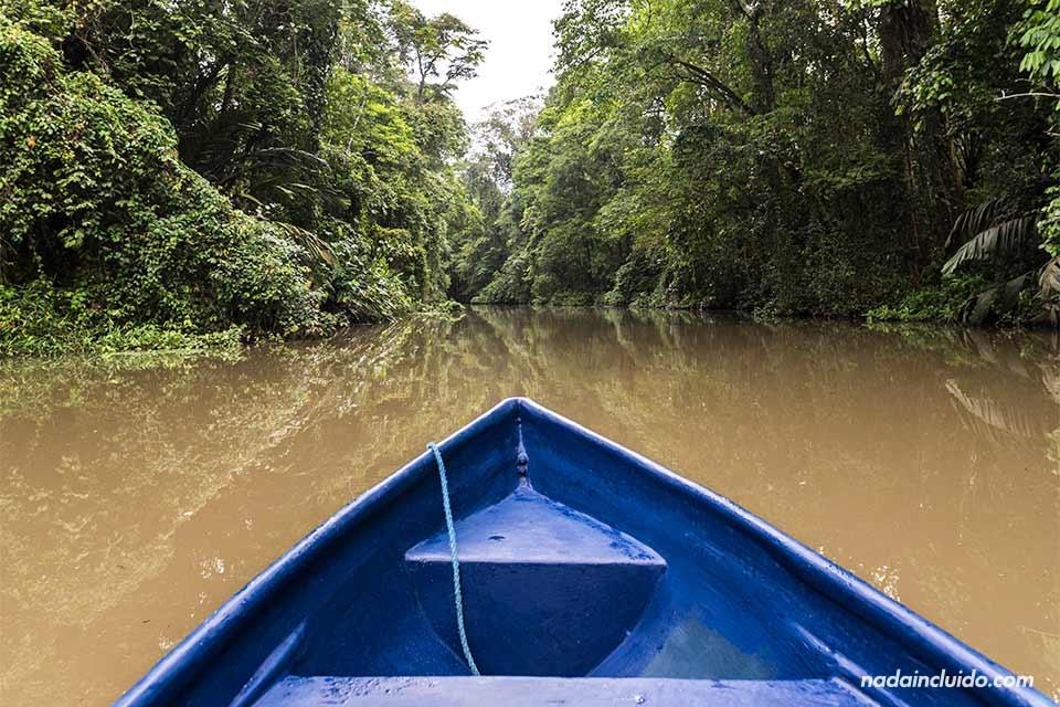 Paseando en barca por los canales del Parque Nacional de Tortuguero (Costa Rica)