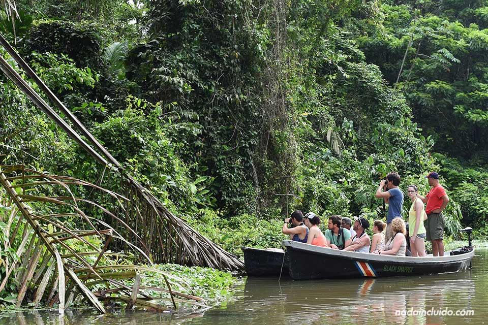 Turistas navegando en los canales de Tortuguero (Costa Rica)
