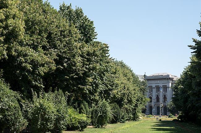 Parucl Cismigiu en Bucarest (Rumanía)