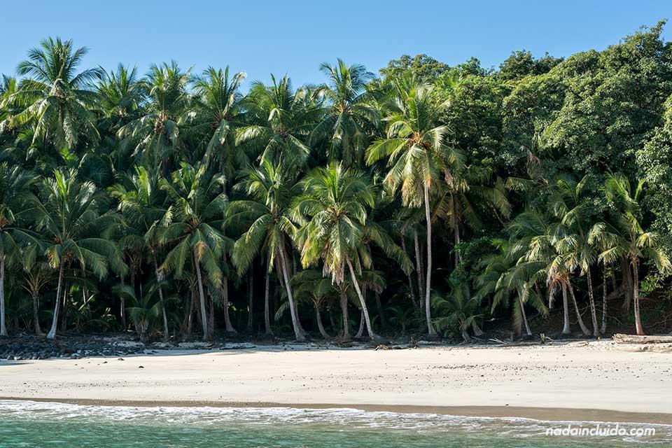 Isla Bolaños en el Parque nacional marino golfo de Chiriqui (Panamá)