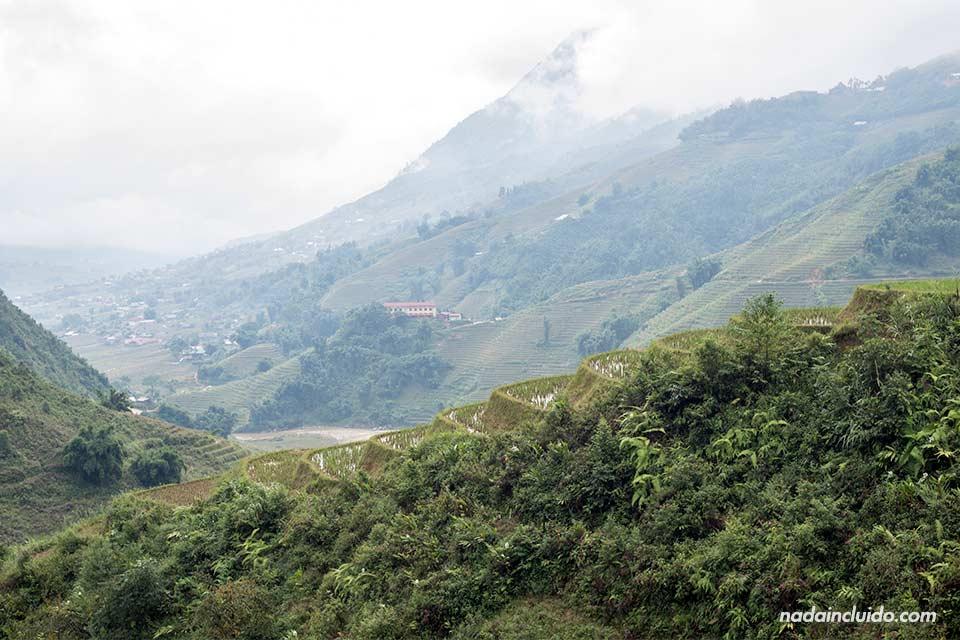 Terrazas de arrozales en la provincia de Lao Cai (Vietnam)