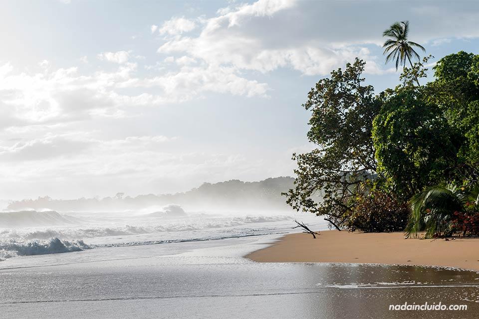 Playa de isla Colón (Bocas del Toro, Panamá)