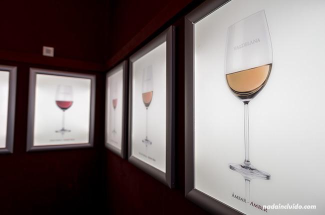 Museo del vino en Bodegas Valdelana (Rioja Alavesa, País Vasco)