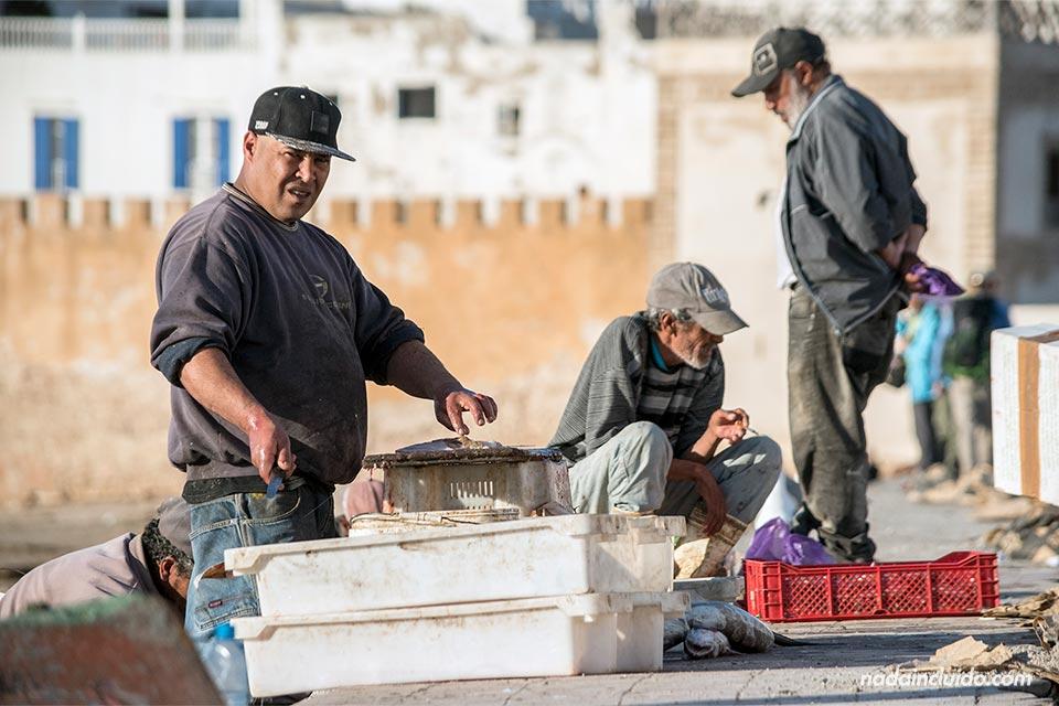 Pescadores faenando en el puerto de Essaouira (Marruecos)
