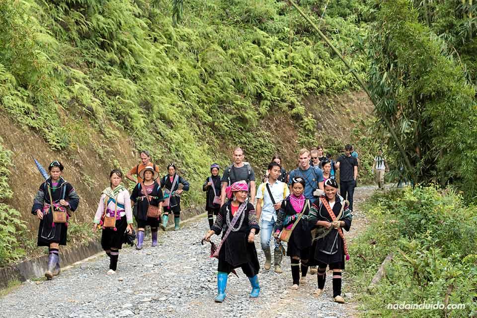 Sherpas acompañan a un grupo haciendo trekking por la región de Sapa (Vietnam)