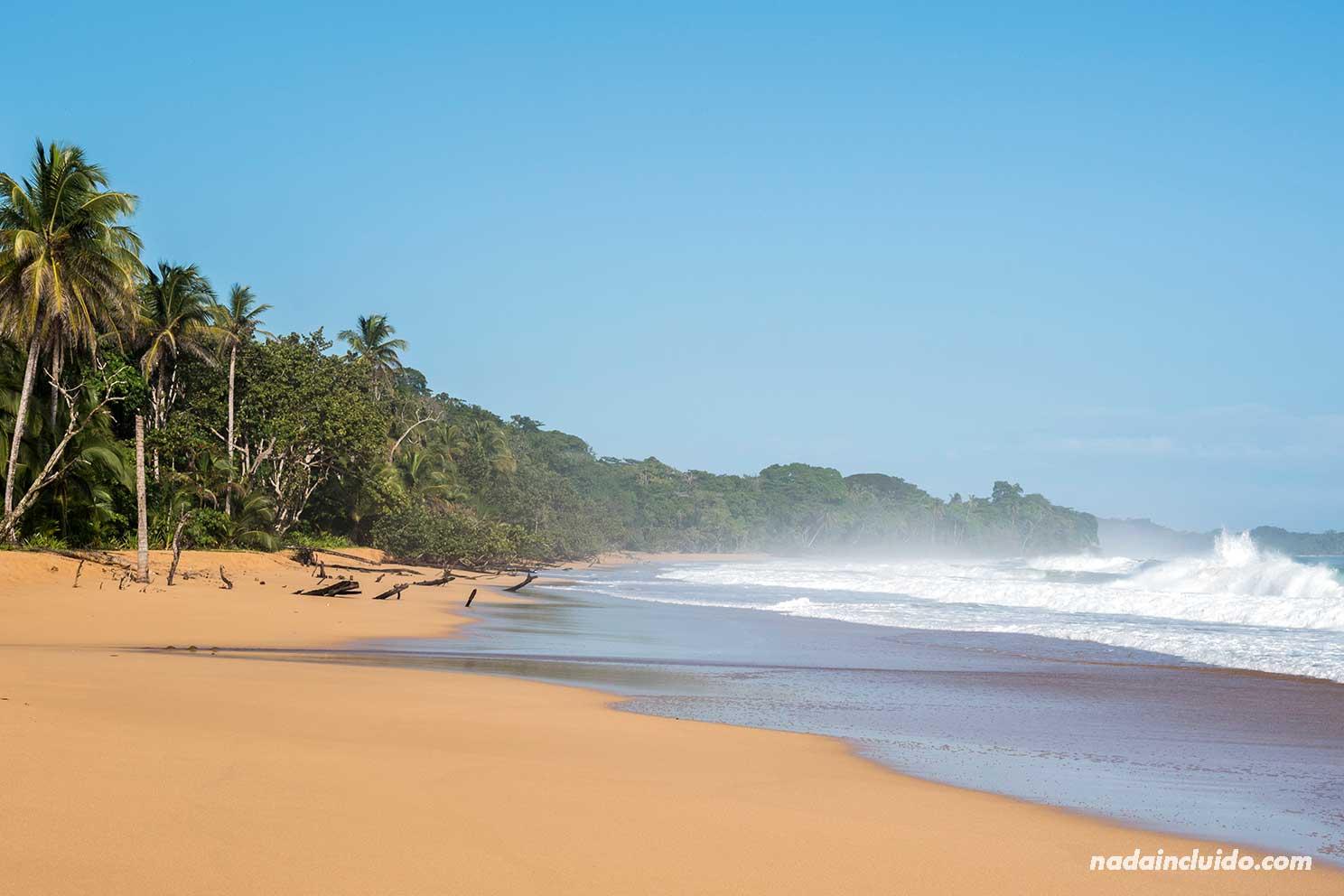 Playa Bluff, en isla Colón (Bocas del Toro, Panamá)