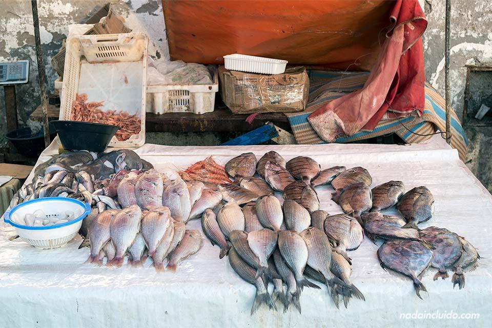 Puesto de venta de pescado en el puerto de Essaouira (Marruecos)