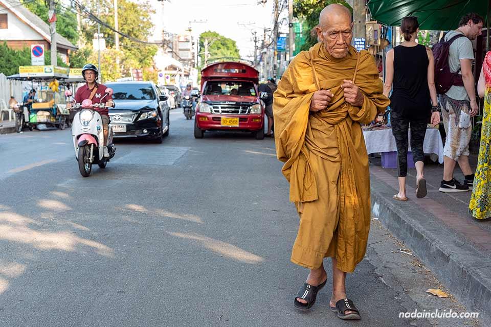 Monje budista caminando por las calles de Chiang Mai (Tailandia)