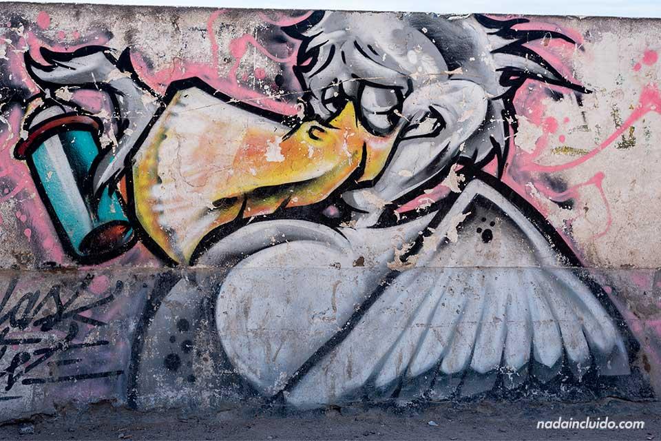 Grafitti de una gaviota en Essaouira (Marruecos)