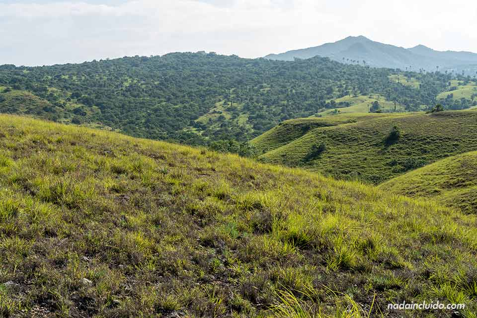 Paisaje de la isla de Rinca (parque nacional de Komodo, Indonesia)