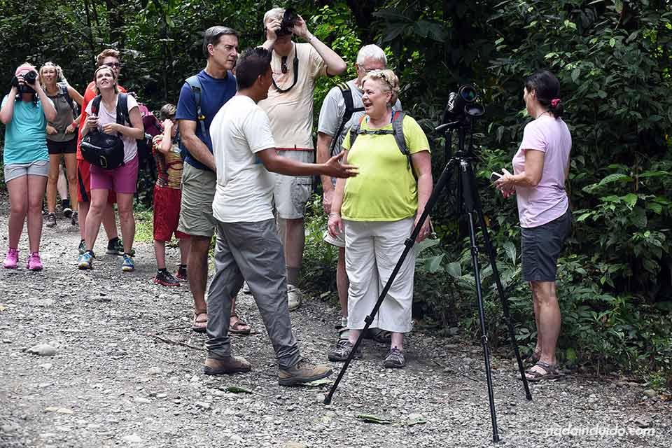 Un grupo de turistas trata de ver monos en el Parque Nacional Manuel Antonio (Costa Rica)