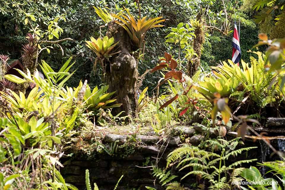Bandera de Costa Rica a la entrada del Bosque Nuboso de Monteverde (Costa Rica)