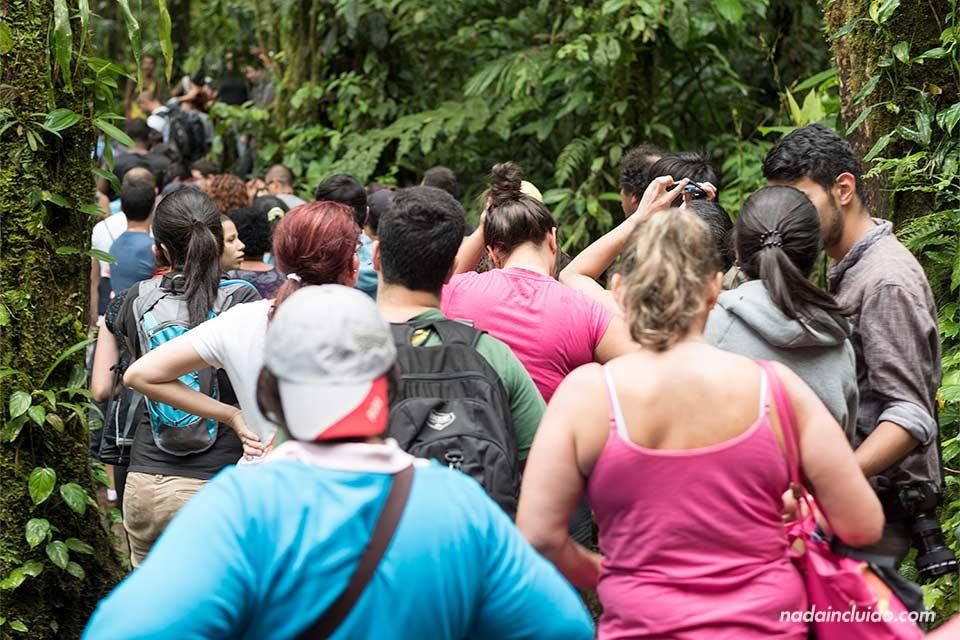 Acumulación de turistas a la entrada de Río Celeste, en el Parque Nacional del Volcán Tenorio (Costa Rica)