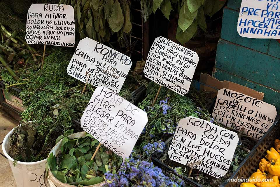 Puesto de remedios naturales en el Mercado de San José (Costa Rica)