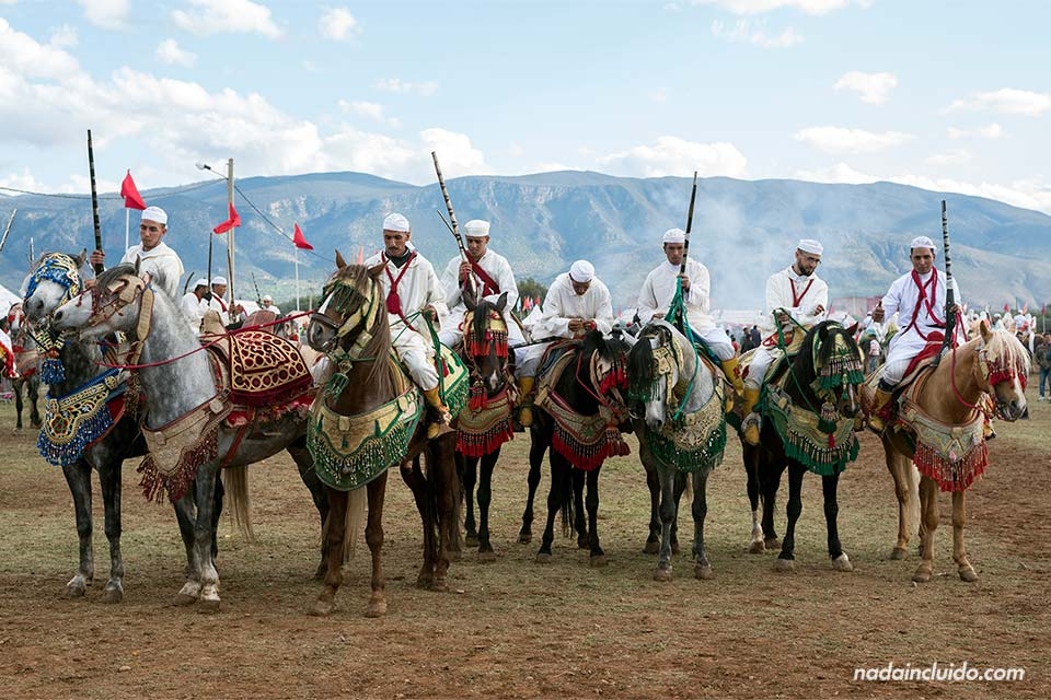 Una fiesta de caballos en Beni Melal (Marruecos)