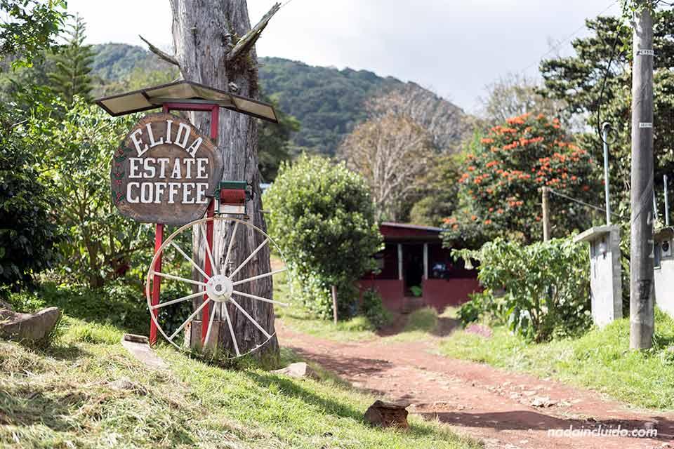 Entrada al cafetal Elida Estate Coffee, Boquete (Panamá)