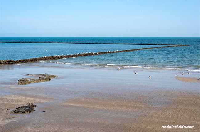 Corrales de pesca de Chipiona desde la playa (Cádiz)