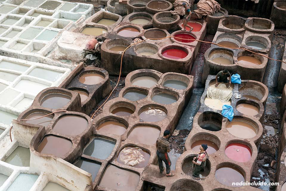Curtiduría Chouwara en la medina de Fez (Marruecos)