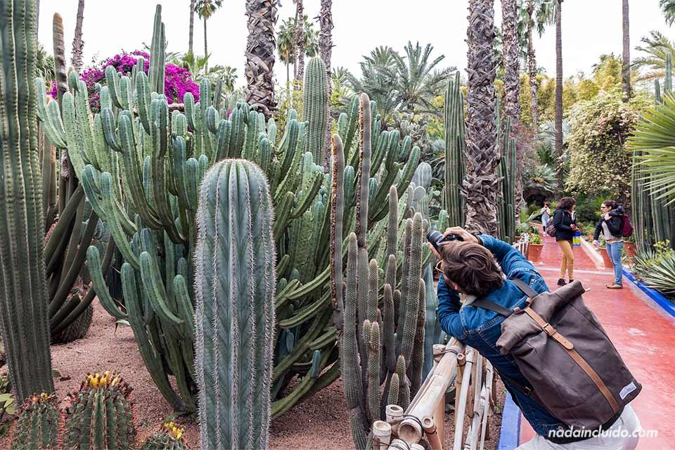 Fotógrafo en el jardín Majorelle de Marrakech (Marruecos)