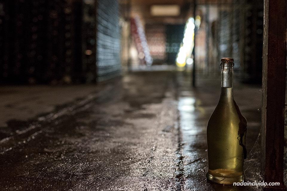 Botella en las bodegas de la cava Montesquius (Sant Sadurní d'Anoia)