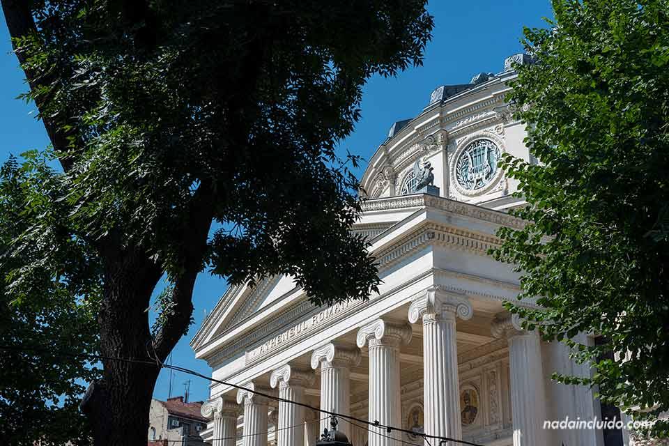 Fachada del Ateneo Rumano de Bucarest entre los árboles (Rumanía)