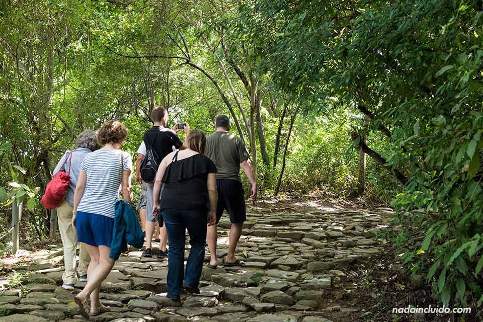 Paseando por Punta Culebra, una reserva natural de ciudad de Panamá