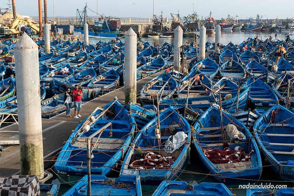 Turistas junto a las barcas azules del puerto de Essaouira (Marruecos)