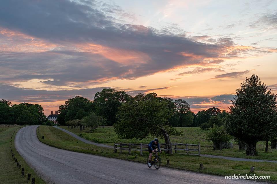 Recorriendo en bici el parque Richmond durante el atardecer (Londres, Inglaterra)