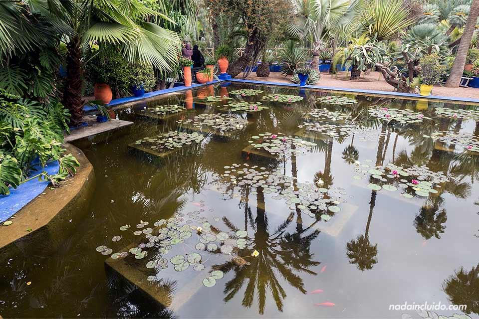 Estanque en el jardín Majorelle de Marrakech (Marruecos)